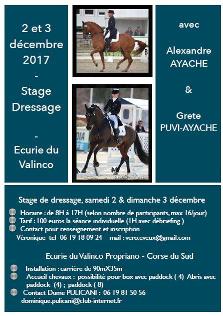 Stage Dressage Ecurie du Valinco