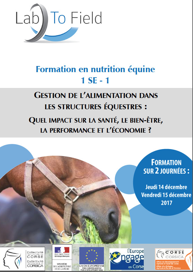 Formation Pro Equiloisirs 2018