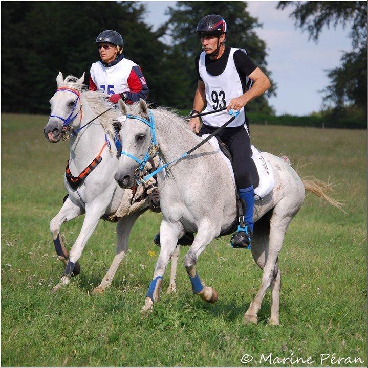 La Corse au EUSTON PARK (GBR) CEI*** Pré-ride des championnats d'Europe 2012