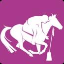 Résultats concours Pony Games- 13 avril 2014- FAE Equiloisirs- Corte