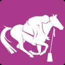 Résultats concours Pony Games- 11 mai 2014- EEHC- Furiani