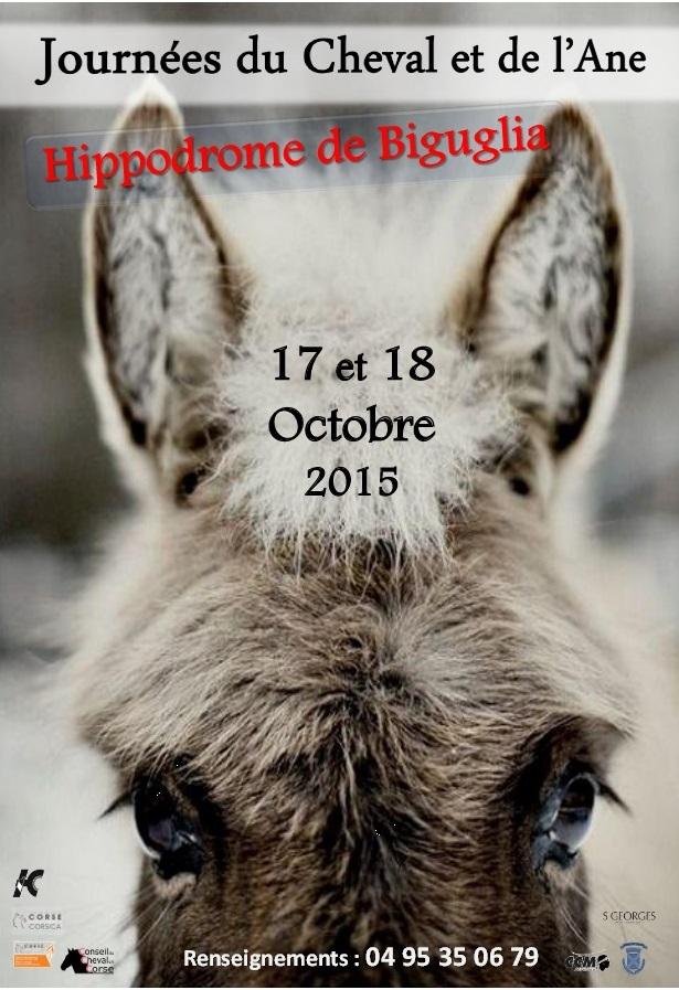 Journées du Cheval et de l'Ane le 17 et 18 Octobre à Biguglia