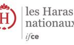 IFCE & Webconférences
