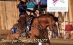 Stages équitation Western