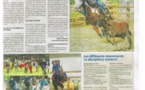 L'Equitation Western fait parler d'elle
