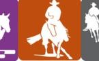 CHAMPIONNAT REGIONAL Saut d'Obstacle Club à Aléria et concours d'Equitation de travail et Equitation Western à Casamaccioli