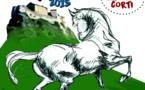 Cavall'in Festa- Foire régionale du cheval- et championnat régional de Pony-games le 13 et 14 juin 2015 - Corte