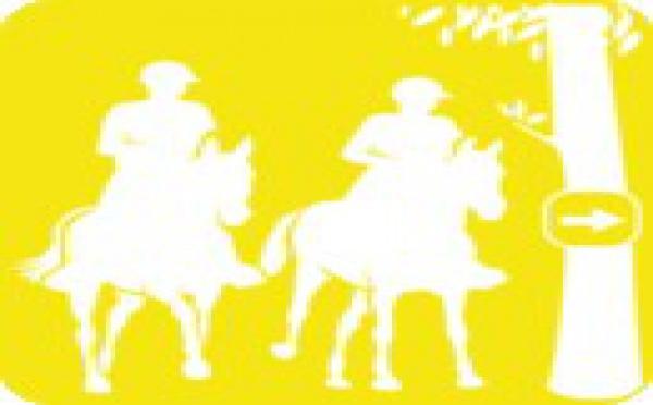 10e concours d'endurance de la saison 2011 (sur 11 concours au total )