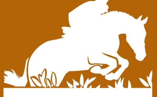 Résultats Championnat Régional Hunter - 10 juin 2019 - Cavall'in Festa organisé par le centre équestre de Balagne