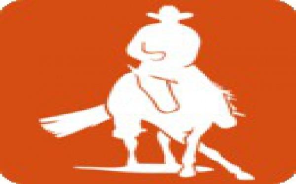 Règlement Régional d'Equitation Travail et Equitation Western 2012