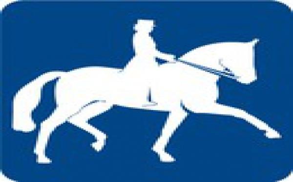 Dressage - Commission et PV  2012