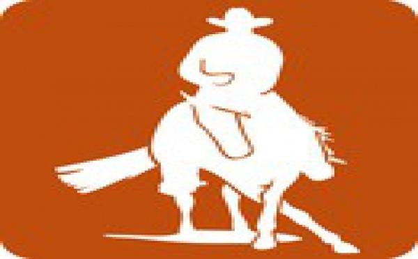 Commission Trec- Equitation Western et de Travail