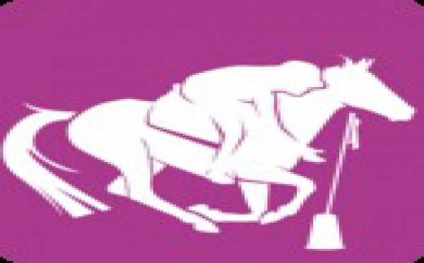 Résultats Coupe de Corse Pony games-9 juin- Corte- Cavall'in festa- Les Cavaliers du Cortenais
