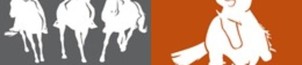 Résultats concours Equitation Western et de Travail- 19 avril 2014- FE le Ranch- Sagone